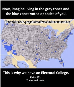 In Addition Trump Won 31 States And Clinton Only 19 That S Why Trump Ended With 313 Electoral College Votes Leaving Clinton With Only 225 And A
