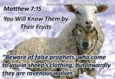 Wolf In Sheep S Clothing Bible Verse